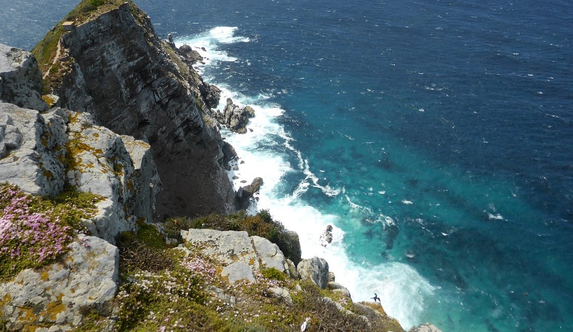 Cape Point: Top five activities