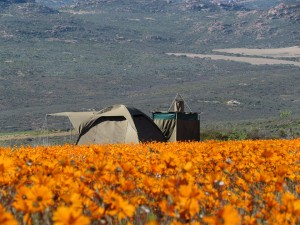 Chiefs Luxury Mobile Tented Camps-Namaqua National Park-Bathtub-CourtChiefs Luxury Mobile Tented Camps-2