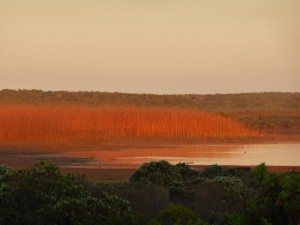 Pan sunset-Rocherpan Nature Reserve-CapeNature-Arnold Ras-Banner
