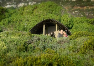 Take your family to Slangkop Tented Camp at Table Mountain National Park. Photo by Riaan Vermeulen.