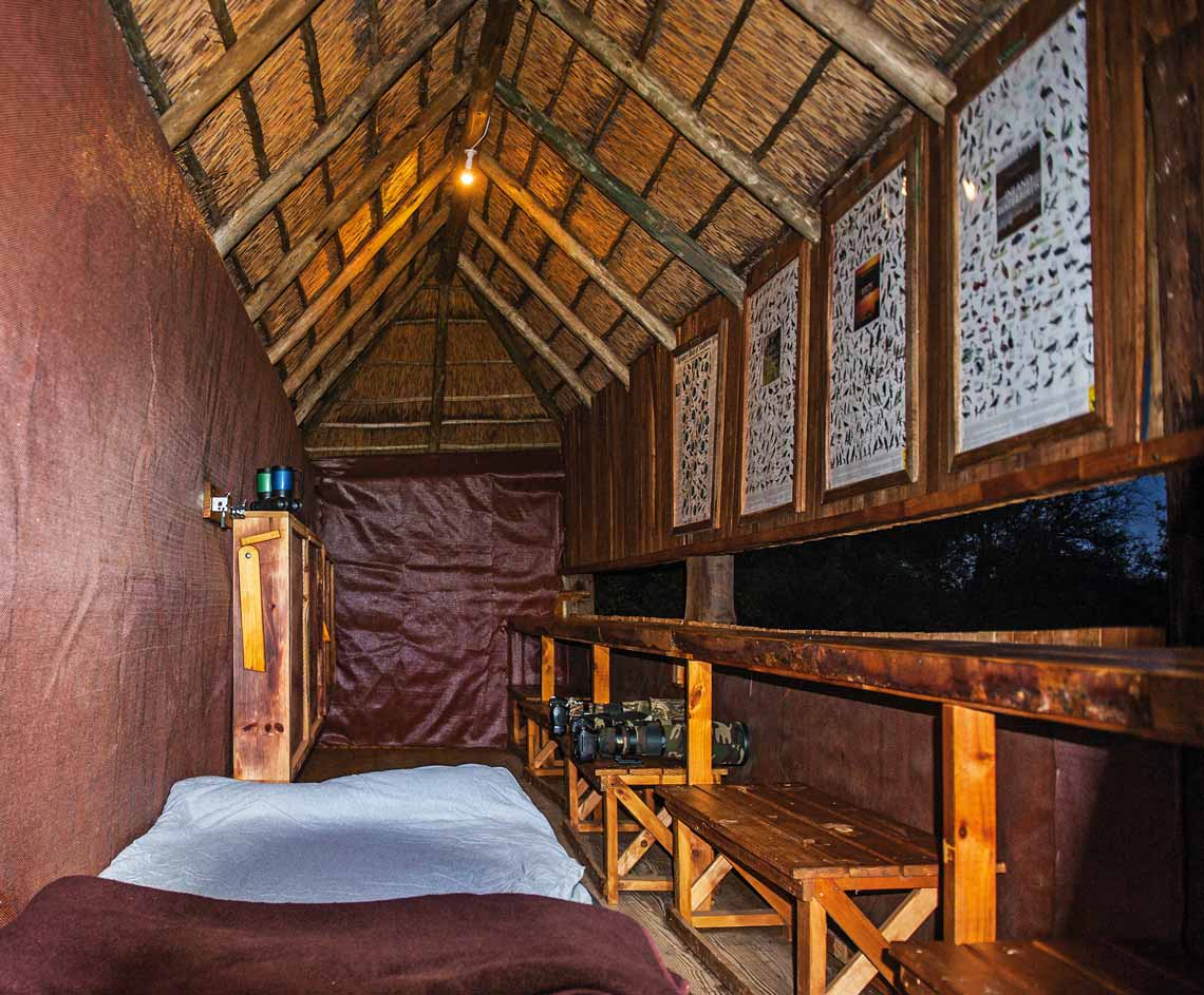 Experience the ultimate wildlife viewing experience on a budget – a night in a hide! Photo by Bridgena and Johan Barnard.