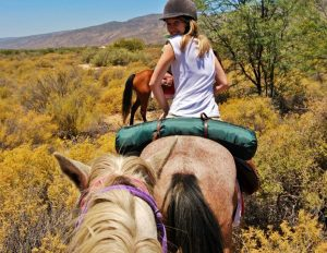 A horseback ride offers a new perspective on Anysberg's open plains.