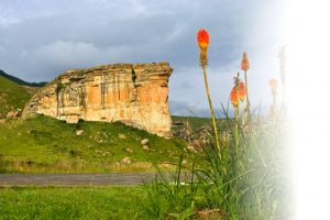 The iconic Brandwag Buttress at Golden Gate Highlands National Park