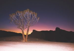 Richtersveld Magical Canvas. Picture by Bruce Stevens-May2015