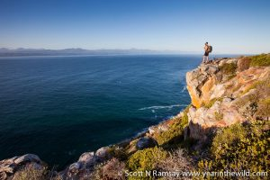 Robberg offers a great variety of hiking trails.