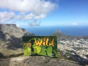 Table Mountain Wildcard
