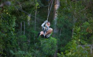 Tsitsikamma Canopy Tours Fancy gliding 30 metres high between centuries-old trees in an indigenous rainforest? Then sign up for an exhilarating treetop tour in the Tsitsikamma section of the Garden Route National Park. Get strapped in and fly like a Knysna turaco between the trees. Tsitsikamma Canopy Tours is situated 45 minutes from Plettenberg Bay and bookings are essential. Visit the Canopy Tours website for a video preview and more information, or send an email to adventure@gardenroute.co.za. Picture courtesy of Canopy Tours South Africa