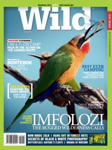 Wild20-Spring-2012-PAGE