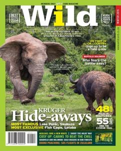 _WILD31 COVER2.indd