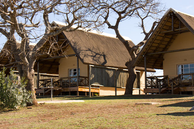 Hluhluwe-iMfolozi: a two-in-one experience