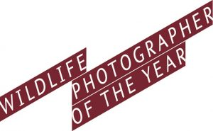 Wildlife Photographer of the Year Exhibition LOGO