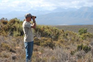 Gamkaberg reserve manager Tom Barry looks out over fields of fynbos.
