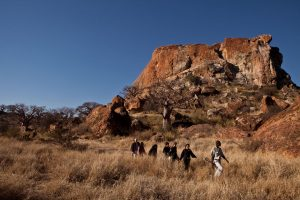 A SANParks guide leads guests on a guided walk with Mapungubwe Hill in the background.