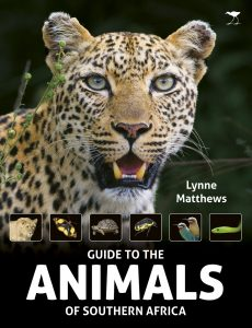 Guide to Animals of Southern Africa