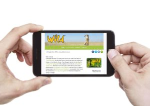 wild-newsletter-graphic-with-smart-phone