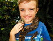 kids-events-snakes-cum