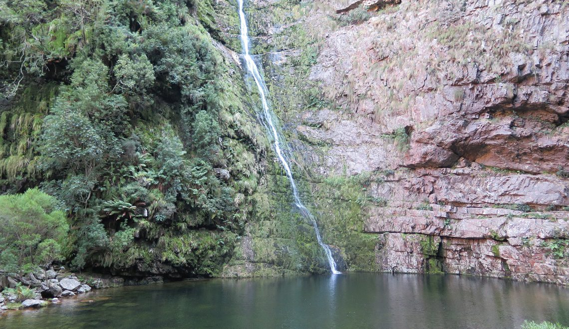 Top 5 freshwater swimming spots for summer