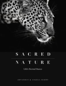 sacred-nature-jonathan-scott-angela-scott-cover