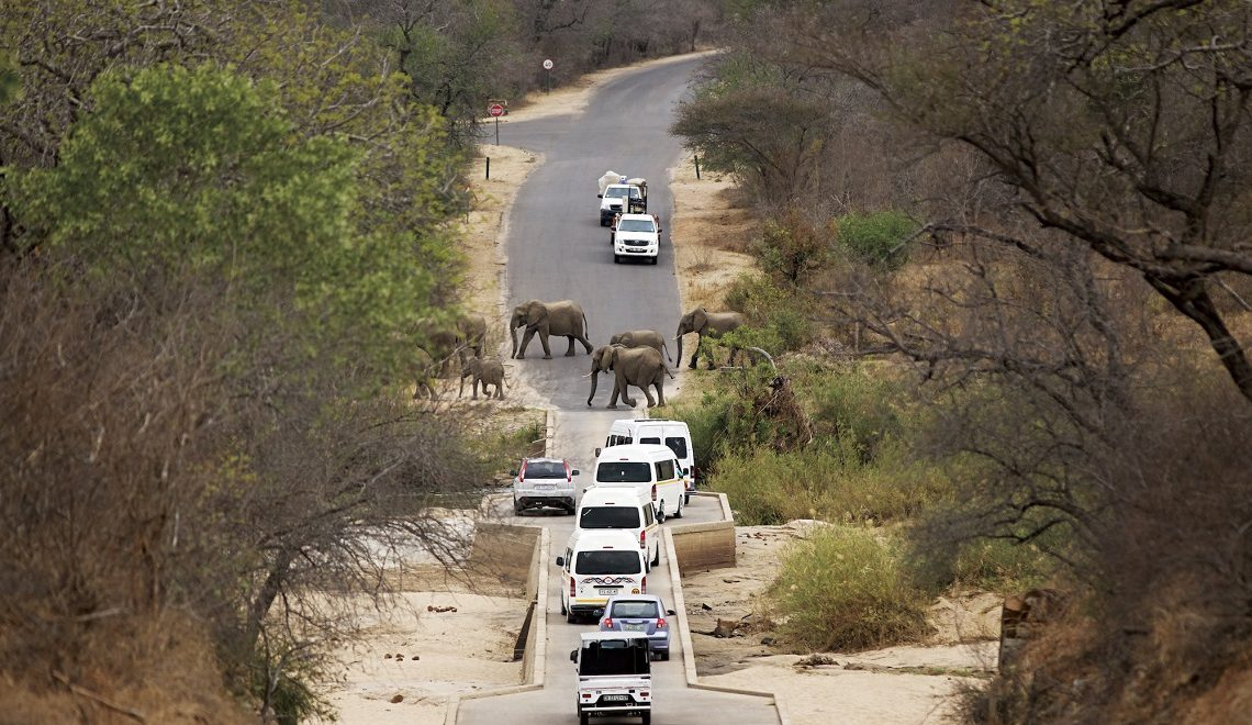 Choose the best Kruger gate this Easter