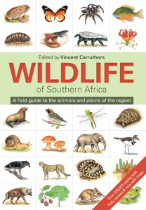 wildlife-of-southern-africa