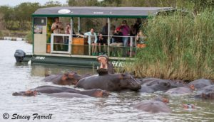 Picture courtesy of Heritage Tours & Safaris, Stacey Farrell