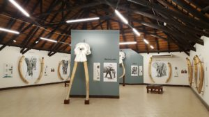 Letaba Elephant Hall re-opening-Kruger-Court SANParks-6