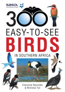 300-Easy-to-See Birds in Southern Africa-min