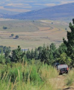 SANParks Honorary Rangers-4x4 forest experience-Court SANParks-2-min