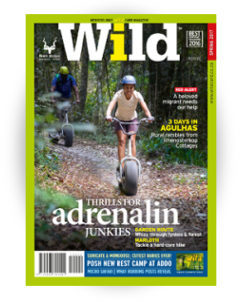 Wild 40 Spring featured pic