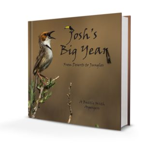 Joshs-big-year-cover