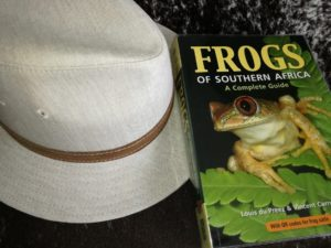 Frogs of Southern Africa-MAIN-min