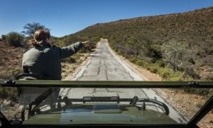 Camdeboo_Game drive_looking out of vehicle_Rudolph de Girardier_IMGL2234-min