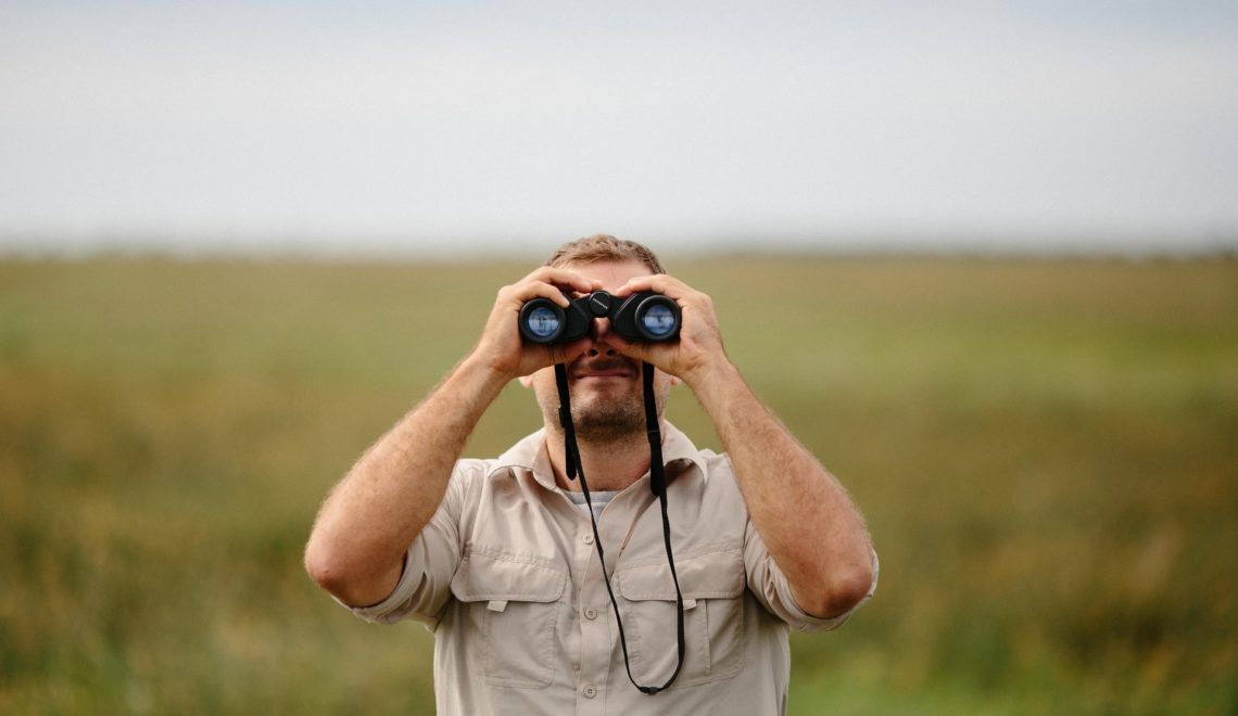 Birding is all about the stories