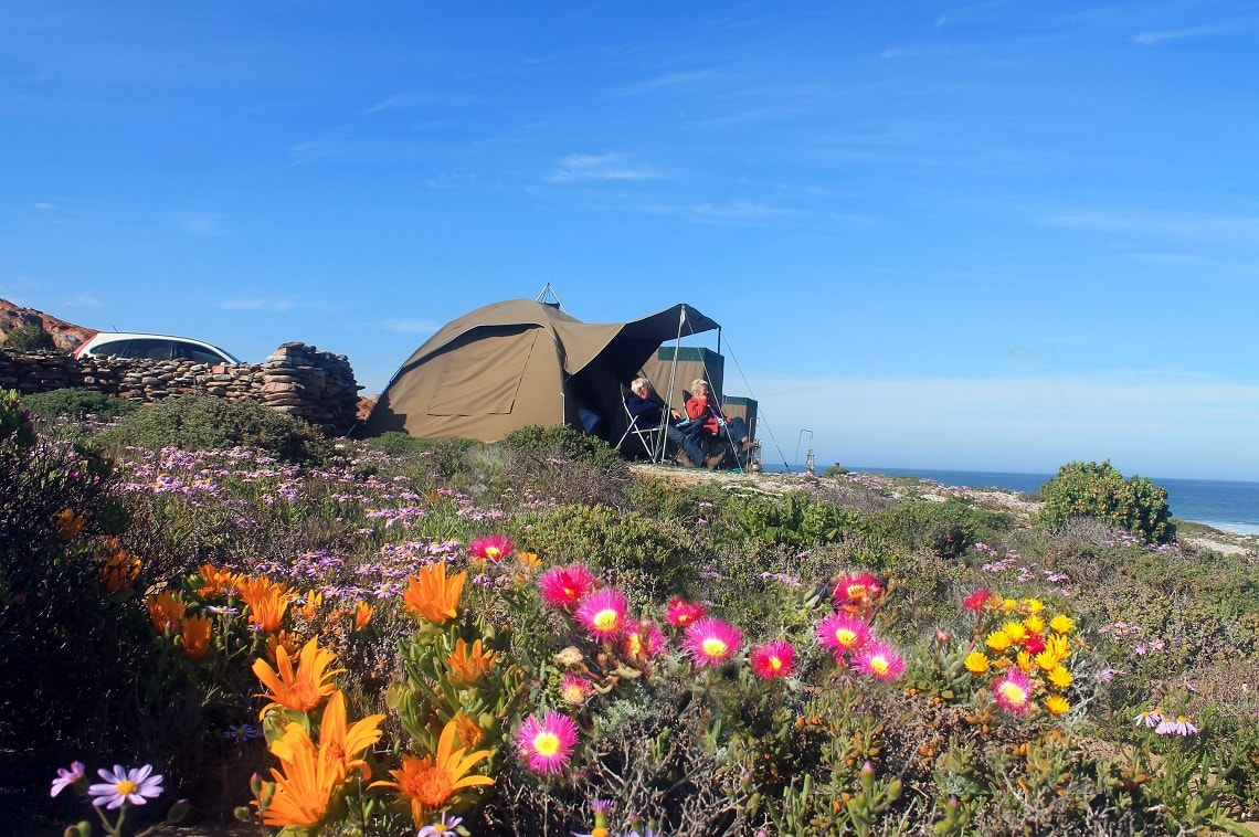 Namaqua Flower Camps-new-1-min