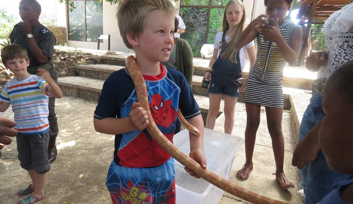 Fun and educational park activities kids will love
